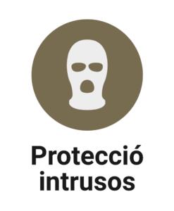 Protecció intrusos